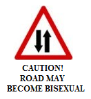 UKIP roadsigns 12