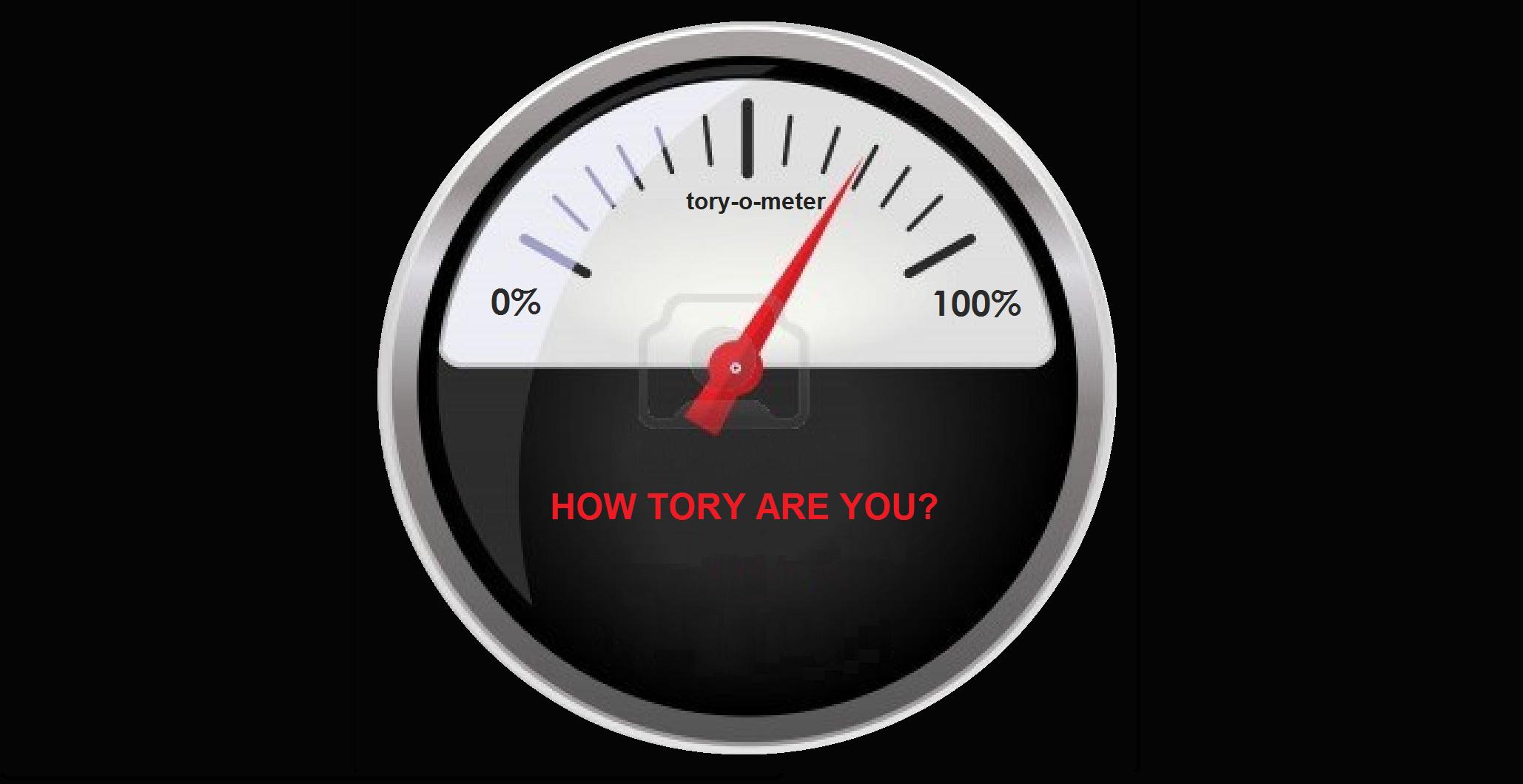 Tory O Meter