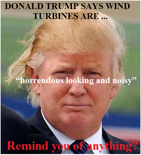 trump wind