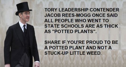 rees mogg potted plant.png