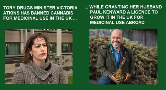 Image result for Drugs minister husband cannabis farm  photo